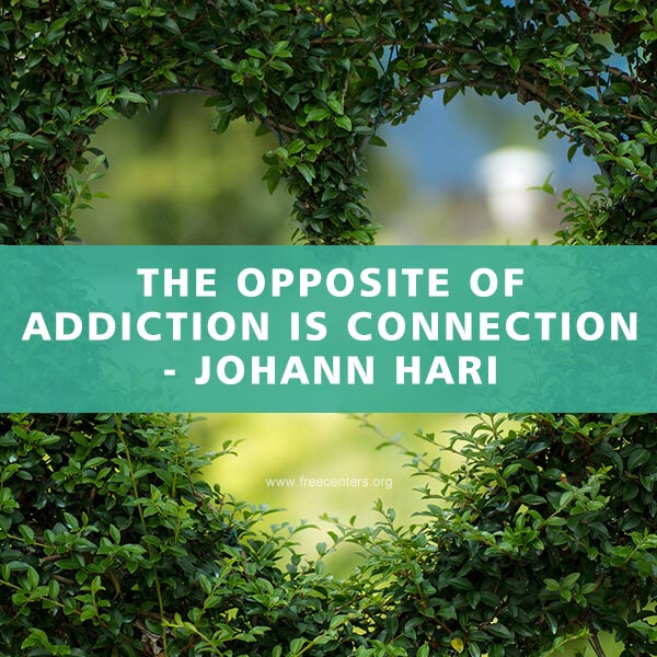 The opposite of addiction is connection.